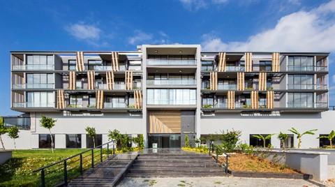 Slash Architects'ten Perspective Ofisler