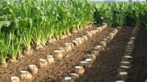 Tarıma Cargill Tokadı