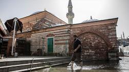 Tarihi Caminin Bahçesini Deniz Anaları Bastı!