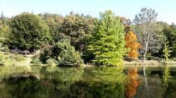 """TEMA Vakfı: """"Orman ve Su Hayattır"""""""