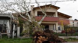 Fırtına 100 Yıllık Çınar Ağacını Devirdi