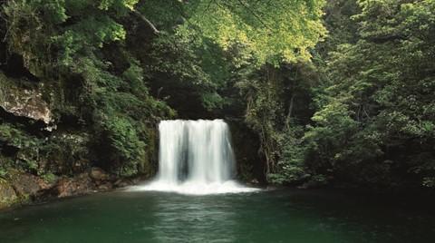 Doğa Alarmda: Geberit Su Tasarrufuna Dikkat Çekiyor