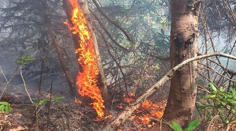 Rize'deki Orman Yangını Kontrol Altına Alınamadı