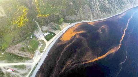 Marmara Sahili Turuncuya Boyandı
