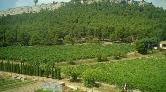 Mimarlar Odası'ndan Atatürk Orman Çiftliği Açıklaması