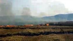 Bodrum'da 60 Dönüm Buğday Tarlası Yandı