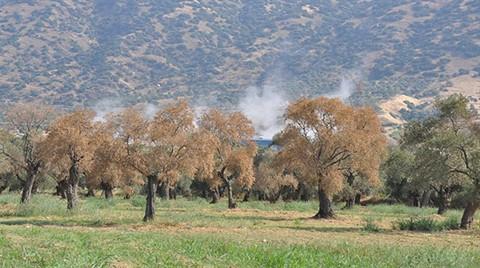 Aydın'daki Jeotermal Tesis İle İlgili Açıklama
