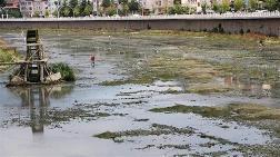 Yeşilırmak Nehri Susuz Kaldı