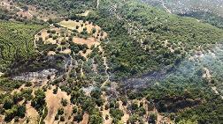 Antalya'da Çıkan Orman Yangınında Büyük Zarar