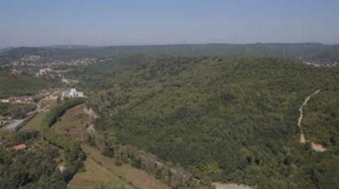 Beykoz'da Özel Ormana 553 Villa