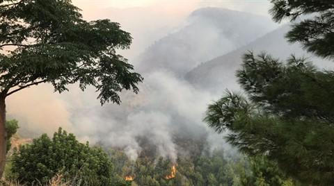 Hatay'daki Yangında 40 Hektar Orman Zarar Gördü