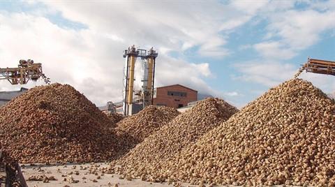 Özelleştirilen 13 Şeker Fabrikasından Sadece 7'si Devredildi