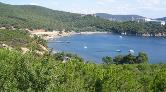 Adalar Savunması'ndan Heybeliada Çam Limanı Açıklaması