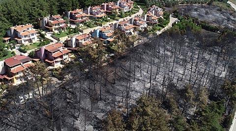 Mudanya'daki Villaların Çevresine Yangına Dayanıklı Çamlar
