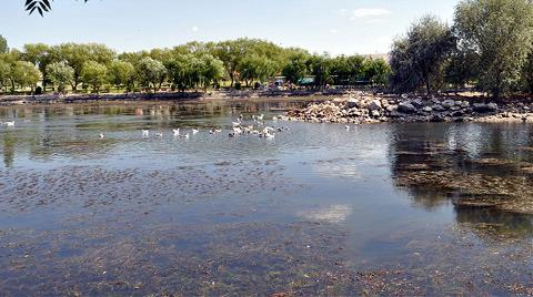Kızılırmak'ta Su Azaldı, Kirlilik Arttı