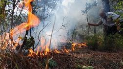 Karabük'te Orman Yangını