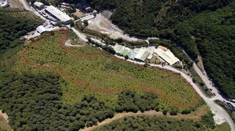 Park Orman Tabiat Parkı Projesinde Yeni Gelişme