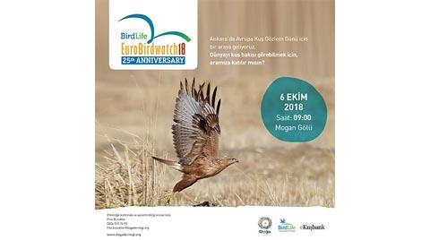 Türkiye'deki Kuş Gözlemciler 21 Farklı Noktada Buluşuyor