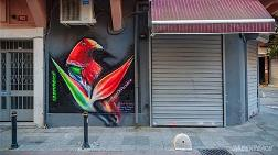 Endonezya'nın Cennet Kuşu, İstanbul'a Kondu