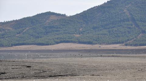 Barajda Su Çekildi, Tarihi Hicaz Demiryolu Hattı Göründü