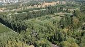 Yargı'dan Atatürk Orman Çiftliği Kararı