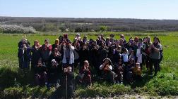 Çerkezköy Termik Santral Projesi İptal Edildi