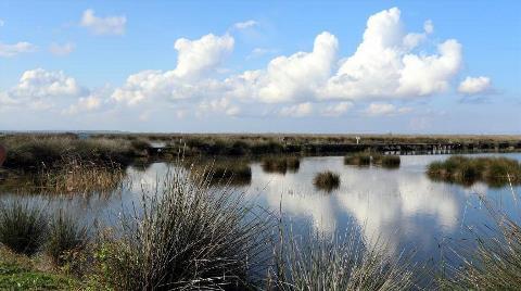 Kızılırmak Deltası İçin UNESCO Sürecinde Sona Gelindi