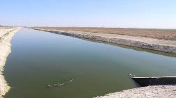 Çumra'daki Organize Hayvancılık Bölgesi'ne Atık Su Darbesi