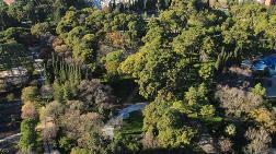 Buca'da Doğal Sit Alanlarının Statüsü Değiştirildi