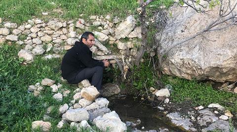 Derik'te 20 Yıldır Akmayan 'Peri Pınarı'ndan Su Geldi