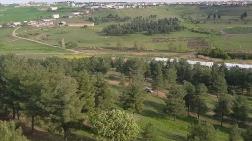 Diyarbakır Kent Ormanı, Konut Alanı Oldu