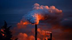 Hava Kirliliğini Yenmek İçin 9 Öneri