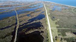 Kızılırmak Deltası İçin UNESCO Süreci Gelecek Yıla Kaldı