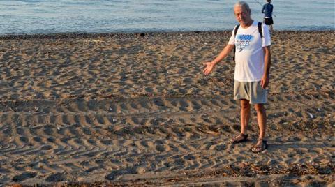 Caretta Caretta Sahilini Tarla Gibi Sürenler Ortada Yok