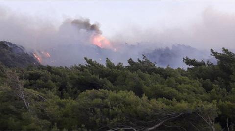 Datça'daki Yangında Kasıt Şüphesi