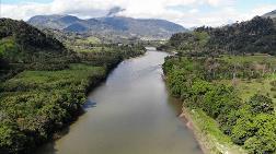 """""""Amazon Ormanları Tarihin En Ağır Saldırısı Altında"""""""