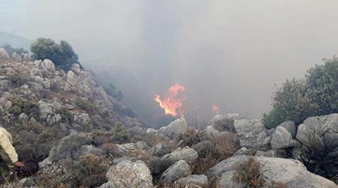 Datça'daki Yangın, Elektrik Kablolarından Çıkmış