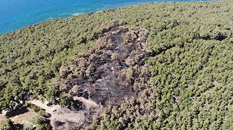 Heybeliada'da Yangının Sebep Olduğu Zarar Görüntülendi