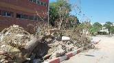 Ege Üniversitesi'nde Ağaç Kesimine Tepki