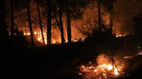 Muğla'da 17 Saat Süren Orman Yangını Kontrol Altına Alındı
