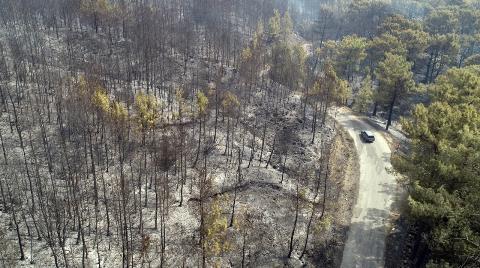 Muğla'da Yanan Ormanlık Alanlar Drone ile Görüntülendi