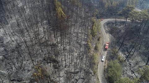 Tarım ve Orman Bakanı'ndan 'Yangın' Açıklaması