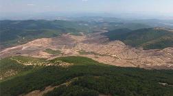 Çanakkale'de Yaşam Tehlikede