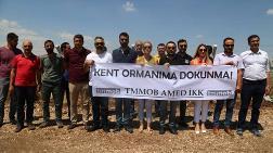 TMMOB Diyarbakır İKK: Kent Ormanı Kararı Durdurulsun