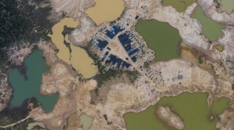 Amazonlar'daki Orman Tahribatı Hızla Artıyor