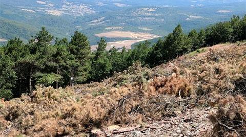 Bakanlıktan Kaz Dağları'na Dair Açıklama