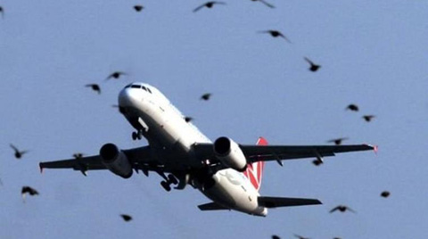 Ulaştırma Bakanı'ndan 'Yeni Havalimanı' İtirafı