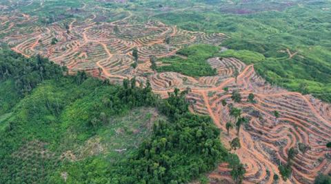 """Bilim İnsanlarından Uyarı: """"Toprağı Sömürmeye Son Verin"""""""