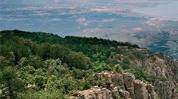 MMO Kaz Dağlarında Altın Madenciliği için Rapor Hazırladı