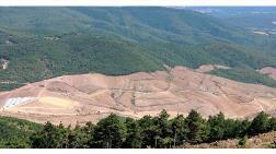 TEMA Vakfı'ndan Kaz Dağları İçin Önemli Çağrı